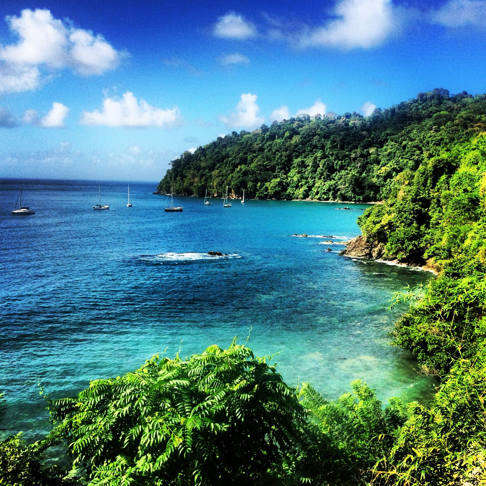 Guadeloupe Beach: The Trek To Pirate's Bay, Tobago