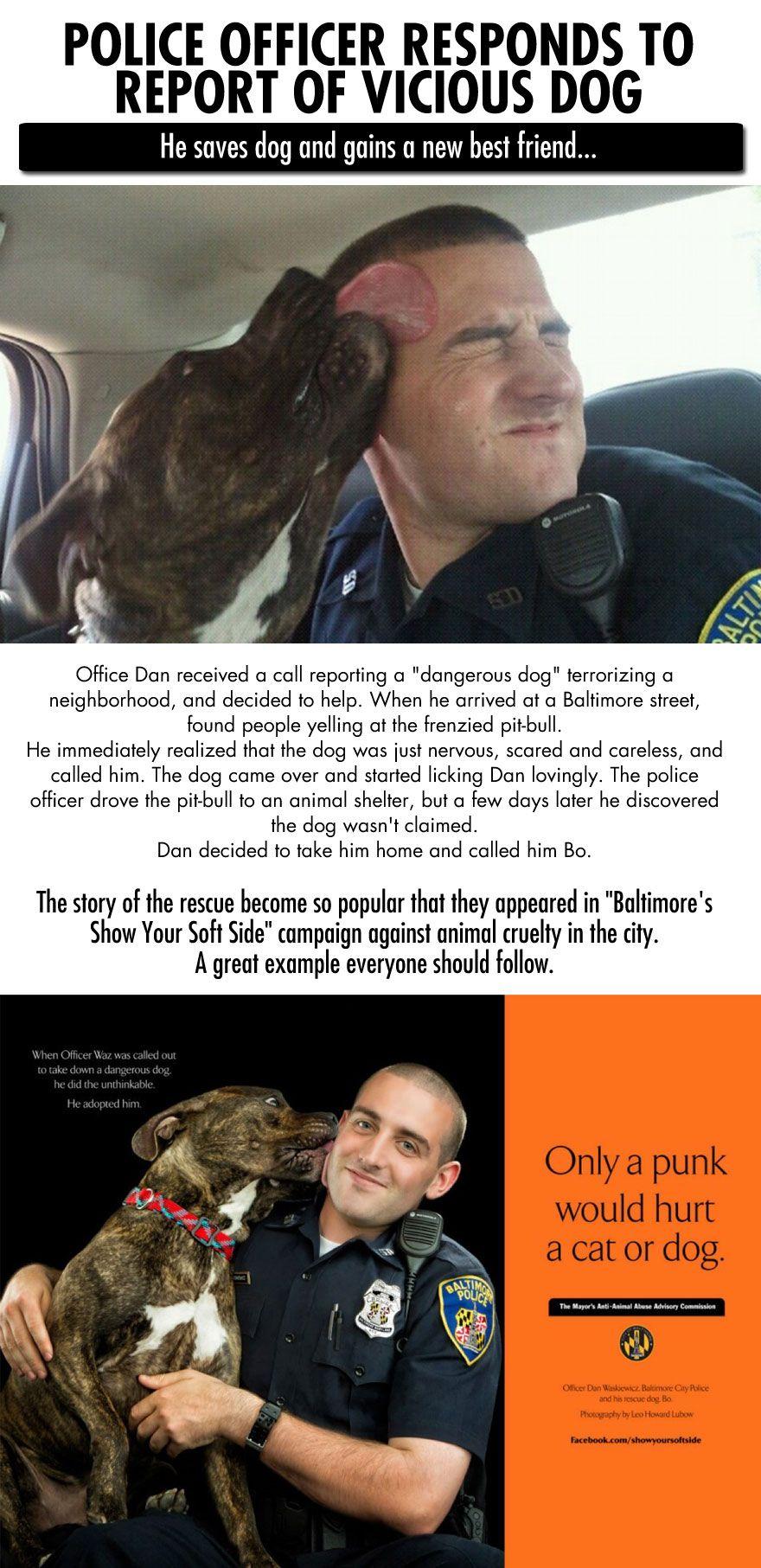 Hero Baltimore cop saves dog, gains new best friend… Good Guy!