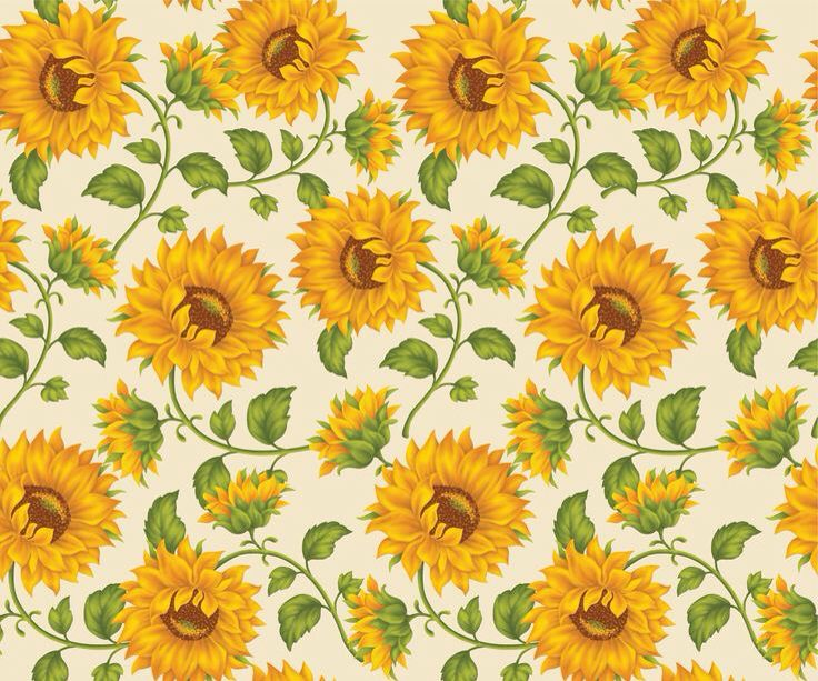 I Love Sunflowers Decoracoes De Girassol Quadros De Girassol Estampas