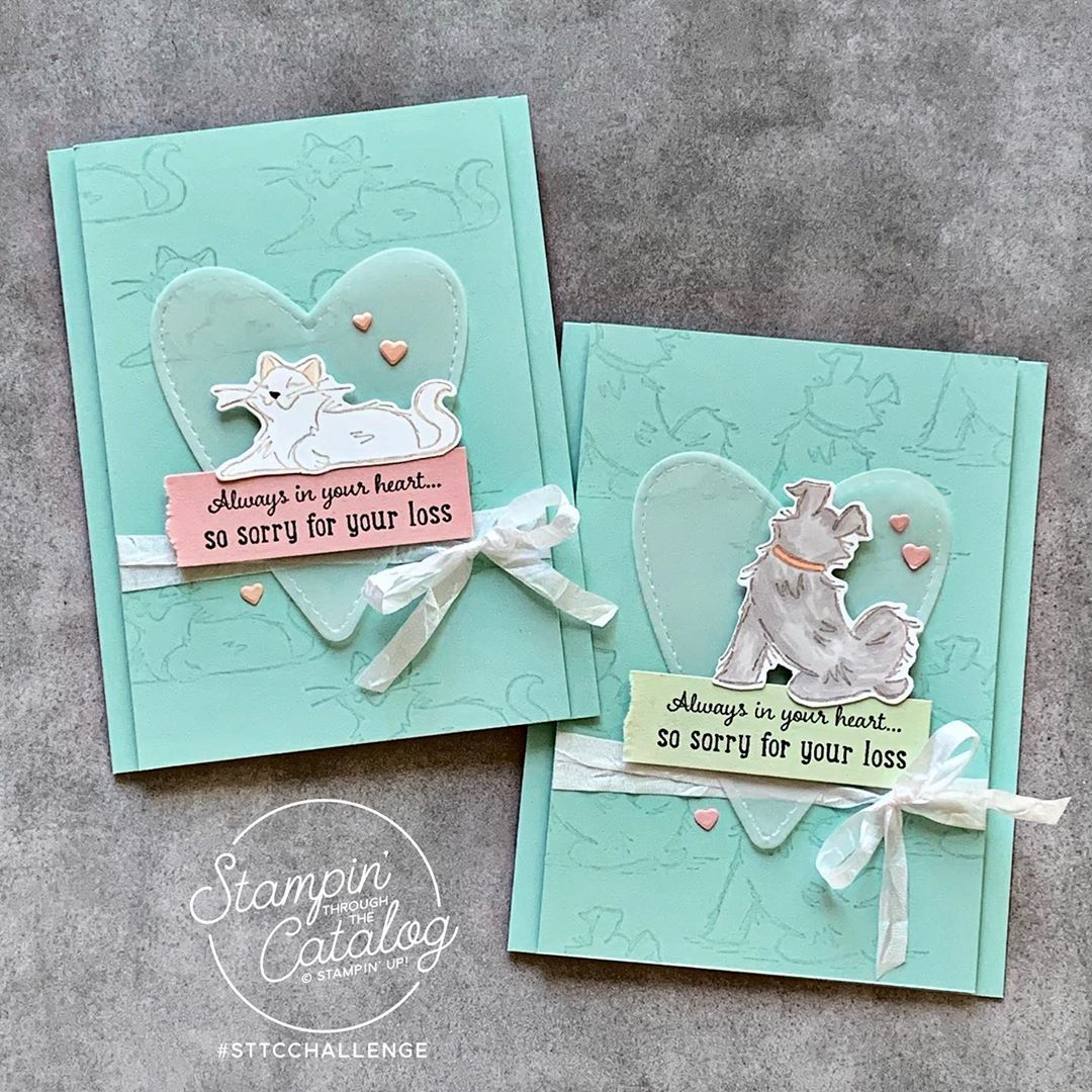 """Stampin' Through the Catalog on Instagram """"The Pampered"""
