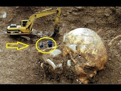 giant human skeletons found all over the world - youtube | odd, Skeleton