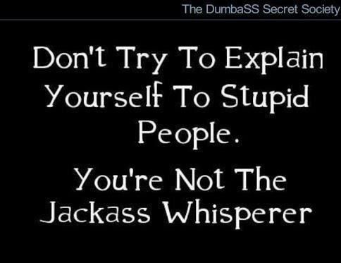 Anonymous Art Of Revolution Don T Try To Explain Yourself To Stupid People You Re Not The Jackass Whisperer Funny Quotes Sarcastic Quotes Stupid People