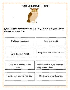 Owl At Home Reading First Second Grade Relief Teaching Ideas Kindergarten Classroom Themes First Grade Writing