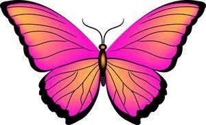 clipart butterfly clip art clipart panda free clipart images rh pinterest com clipart of butterfly black and white clipart of butterfly wings