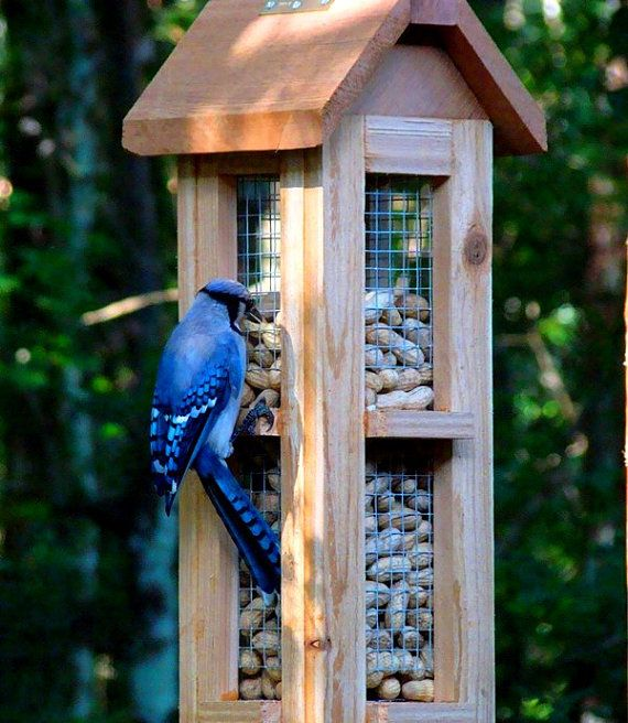Beautiful Cedar Wood Whole Peanut Bird Feeders Unique Bird Feeders For Blue Jays And Woodpeckers Wooden Bird Feeders Bird Feeders Unique Bird Feeders