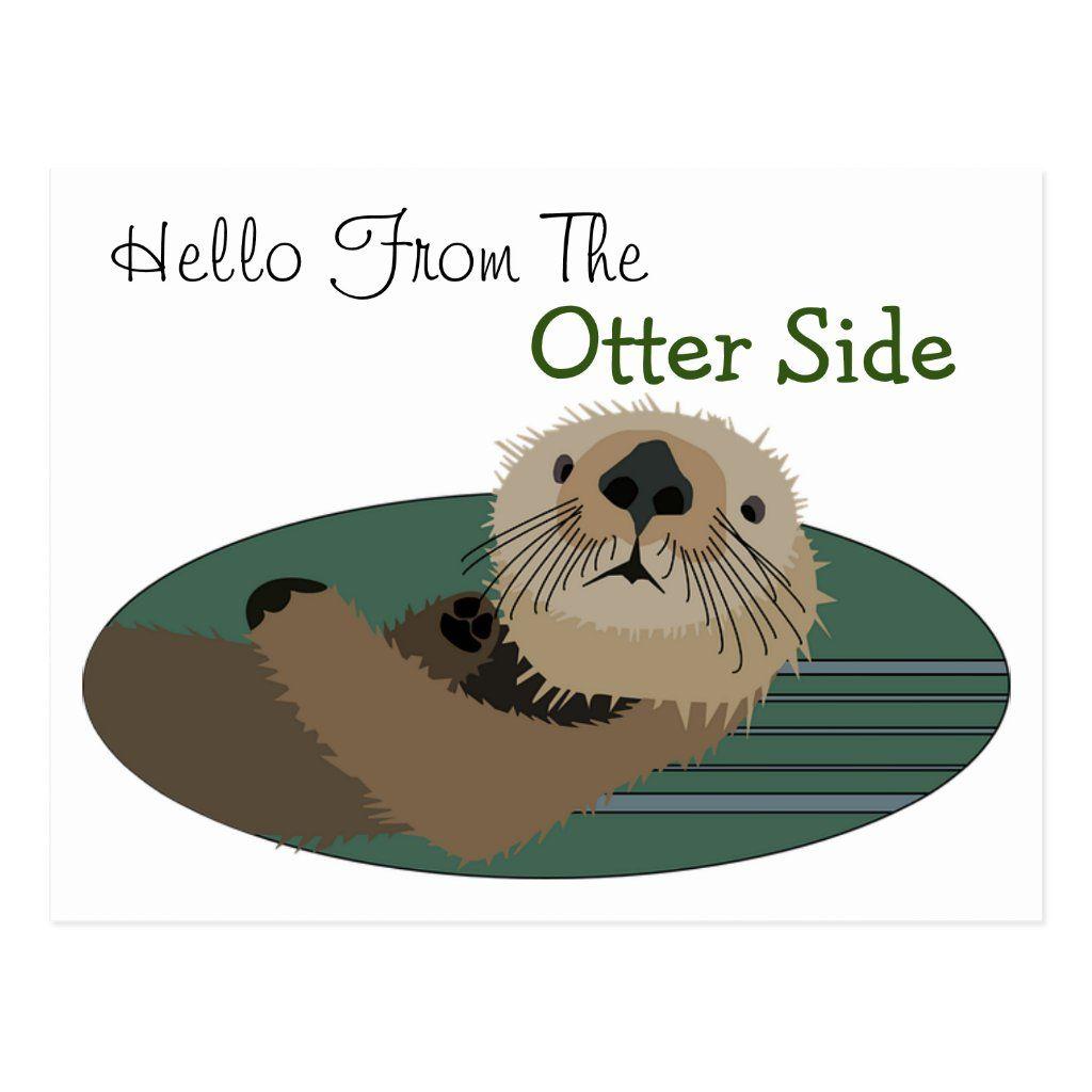 Funny Otter Postcard Zazzle Com Funny Postcards Postcard Otters