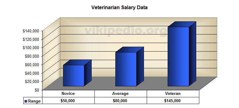 Veterinary Salary  College Planning    Veterinary Salary