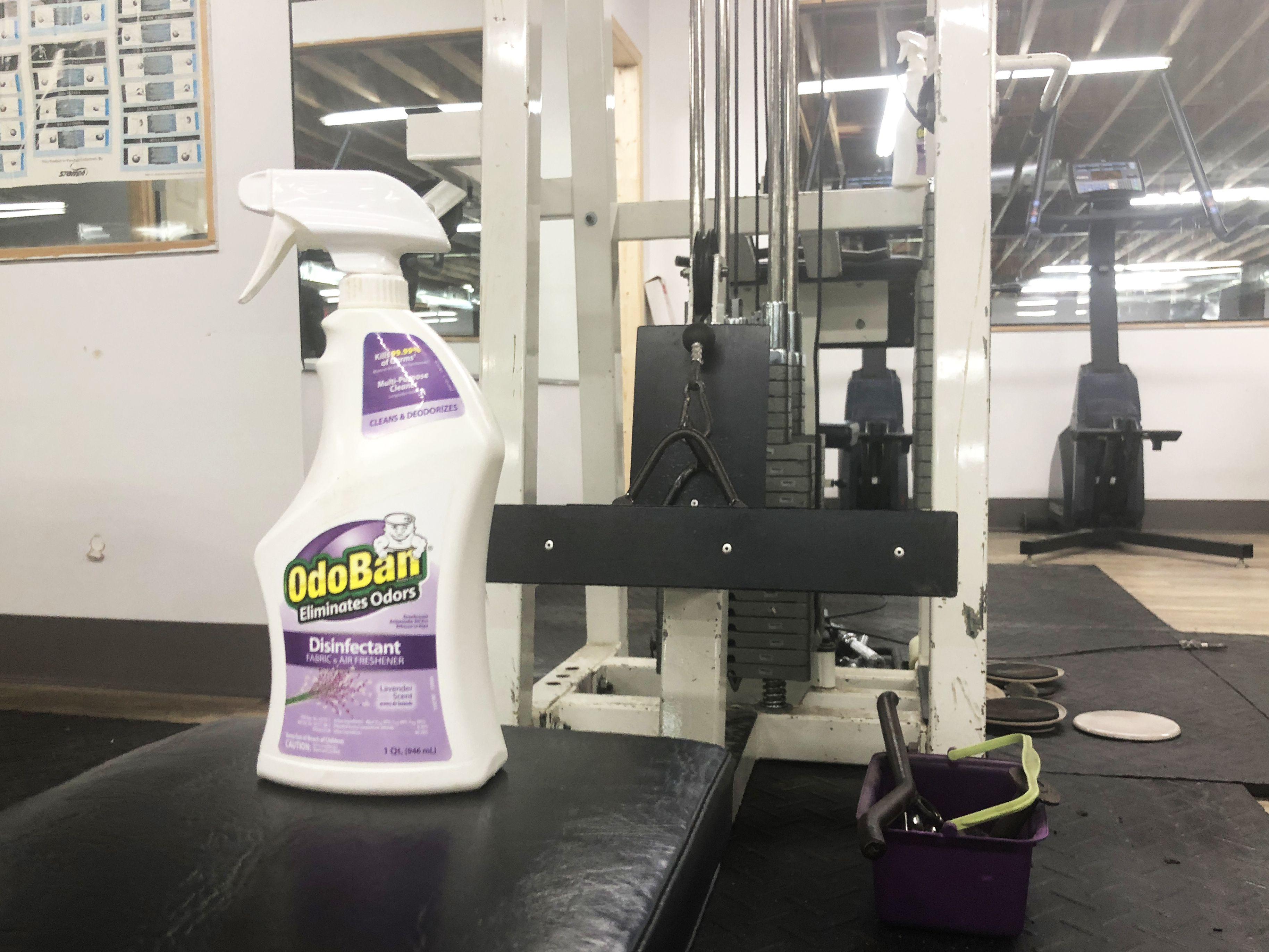 OdoBan Disinfectant and Odor Eliminator Spray Odor