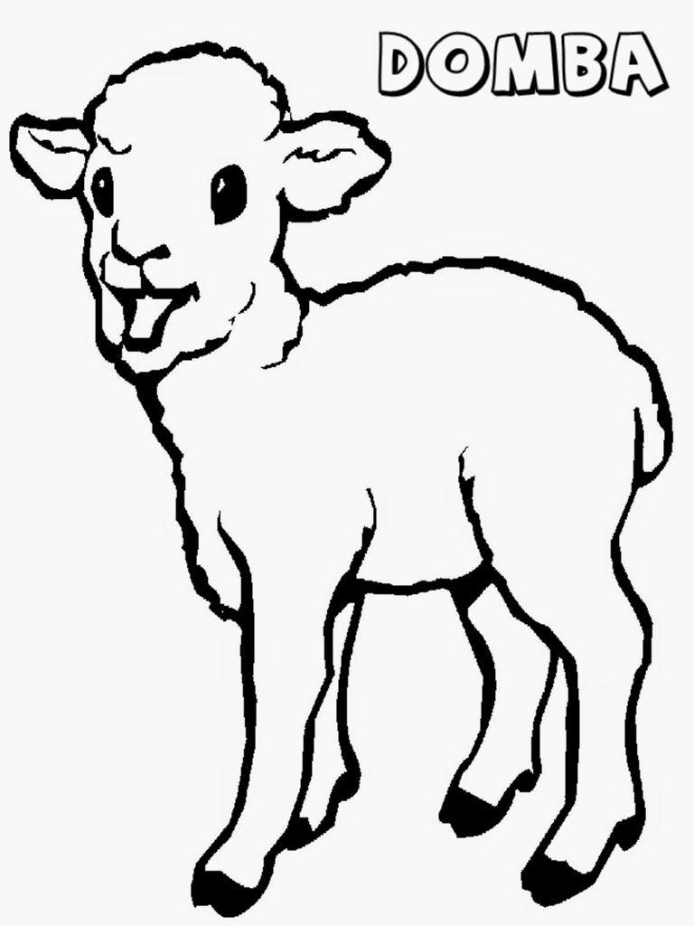 mewarnai gambar anak domba  mewarnai  pinterest  embroidery
