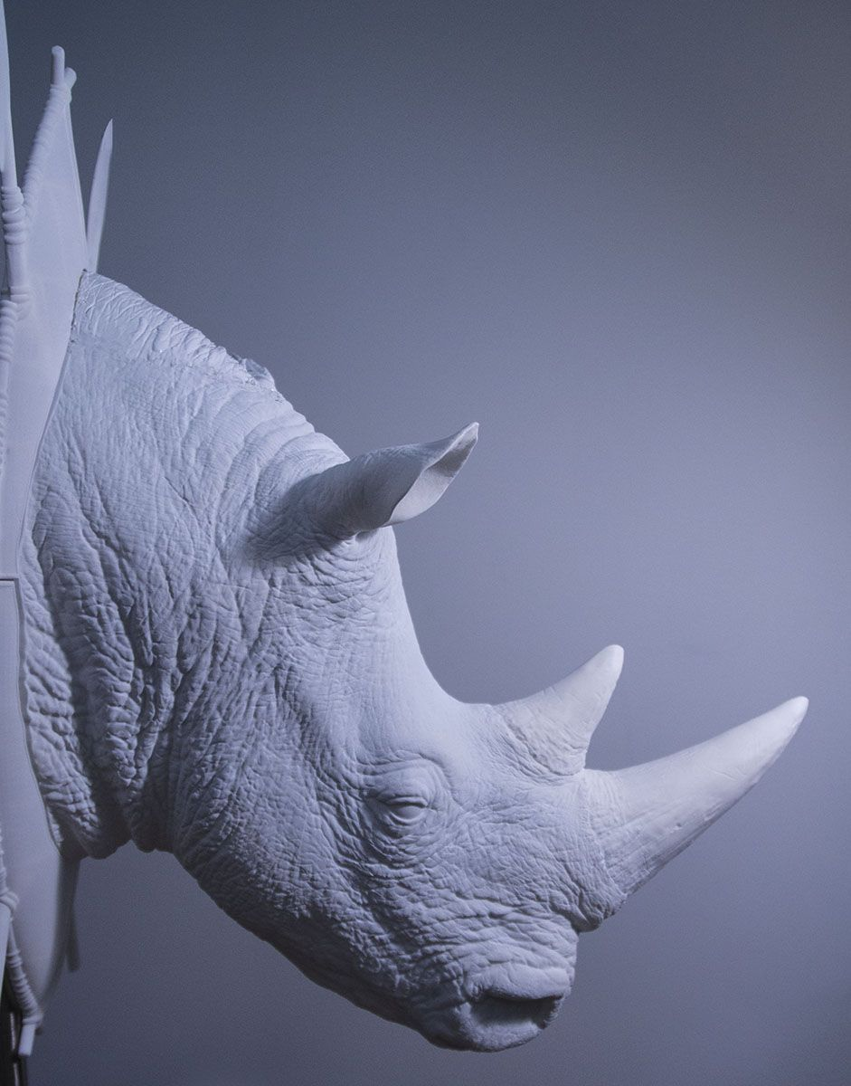 I recently was part of Rhino art