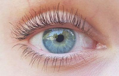 Forskere har ved en tilfeldighet oppdaget en fantastisk ingrediens som kan få øyenvipper og bryn til å plutselig vokse ekstremt. …