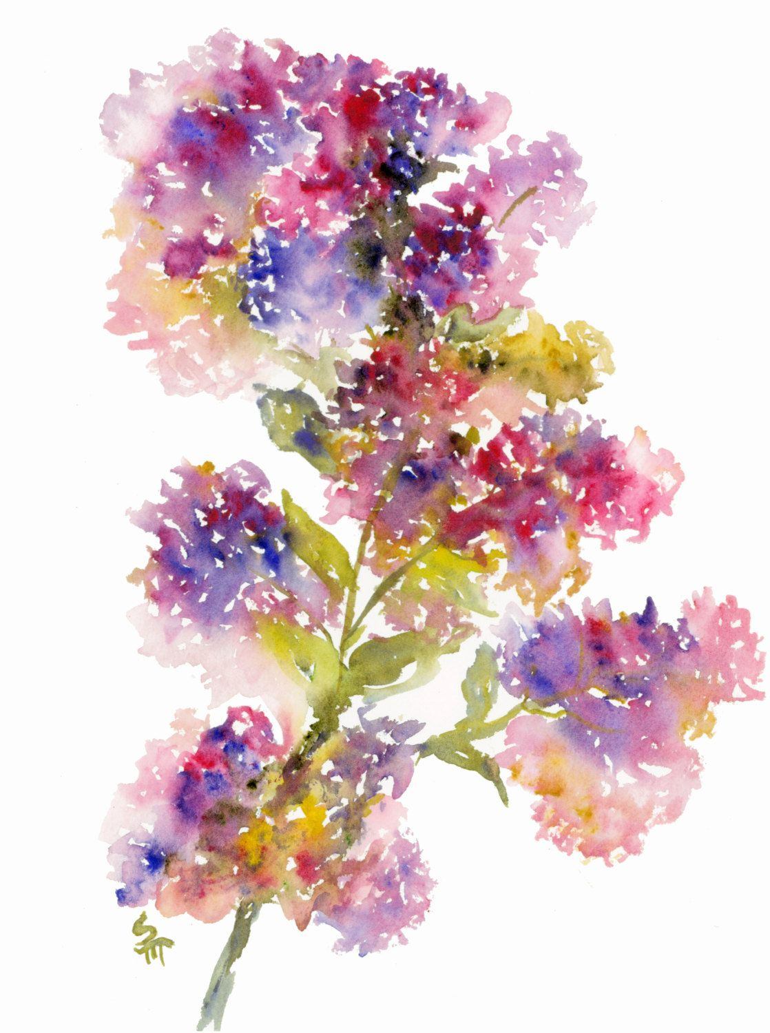 Purple Lilacs Watercolor Fine Art Print Watercolor Flowers