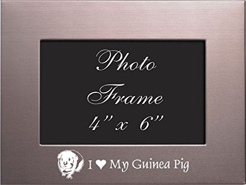 4x6 Brushed Metal Picture Frame-I love my Guinea Pig-PNK | Brushed ...