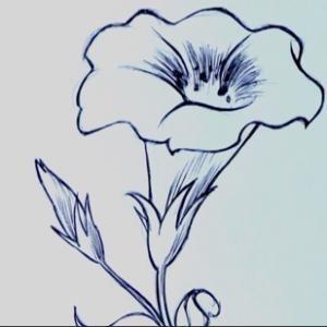 Disegni a matita facili cerca con google idee disegno for Immagini da copiare a mano