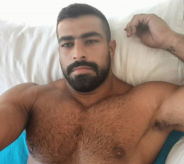 Germany hairy gay men