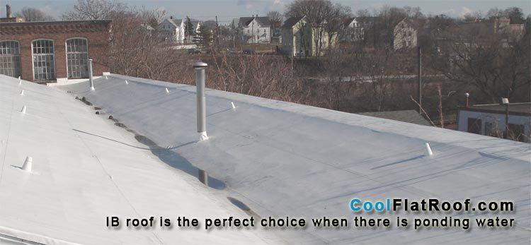 IB PVC Roof – Lifetime Flat Roofing