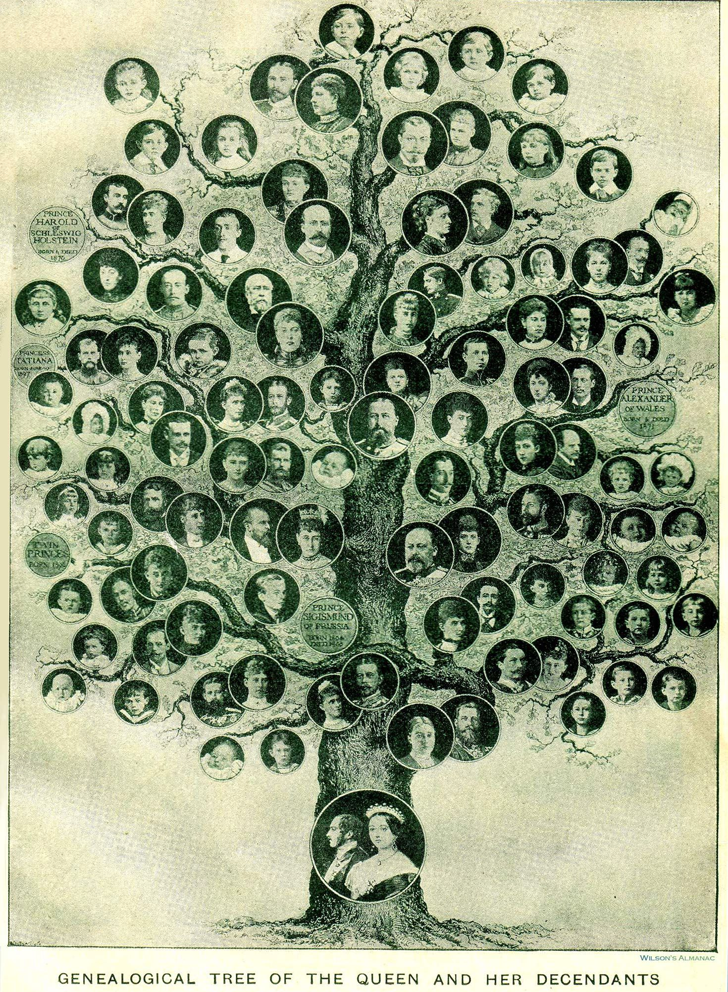 Why Does Family History Matter? | Pinterest | Suche, Google und ...