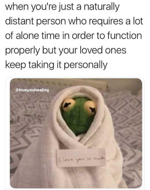 Pin On Fresh Memes