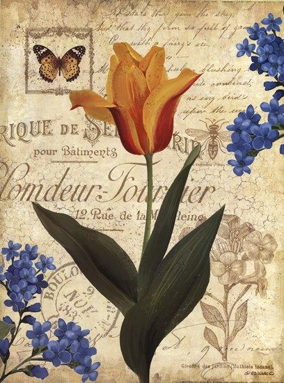Beauty in Bloom II by Ed Wargo art print