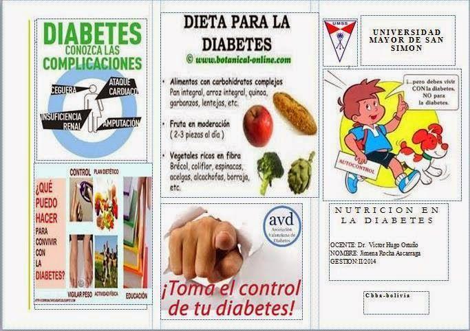 Triptico en Español de la Nutricion en la Diabetes Diabetes