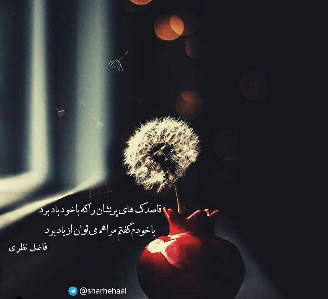 فاضل نظری غزل شعر Persian Poetry Persian Poem Farsi Quotes