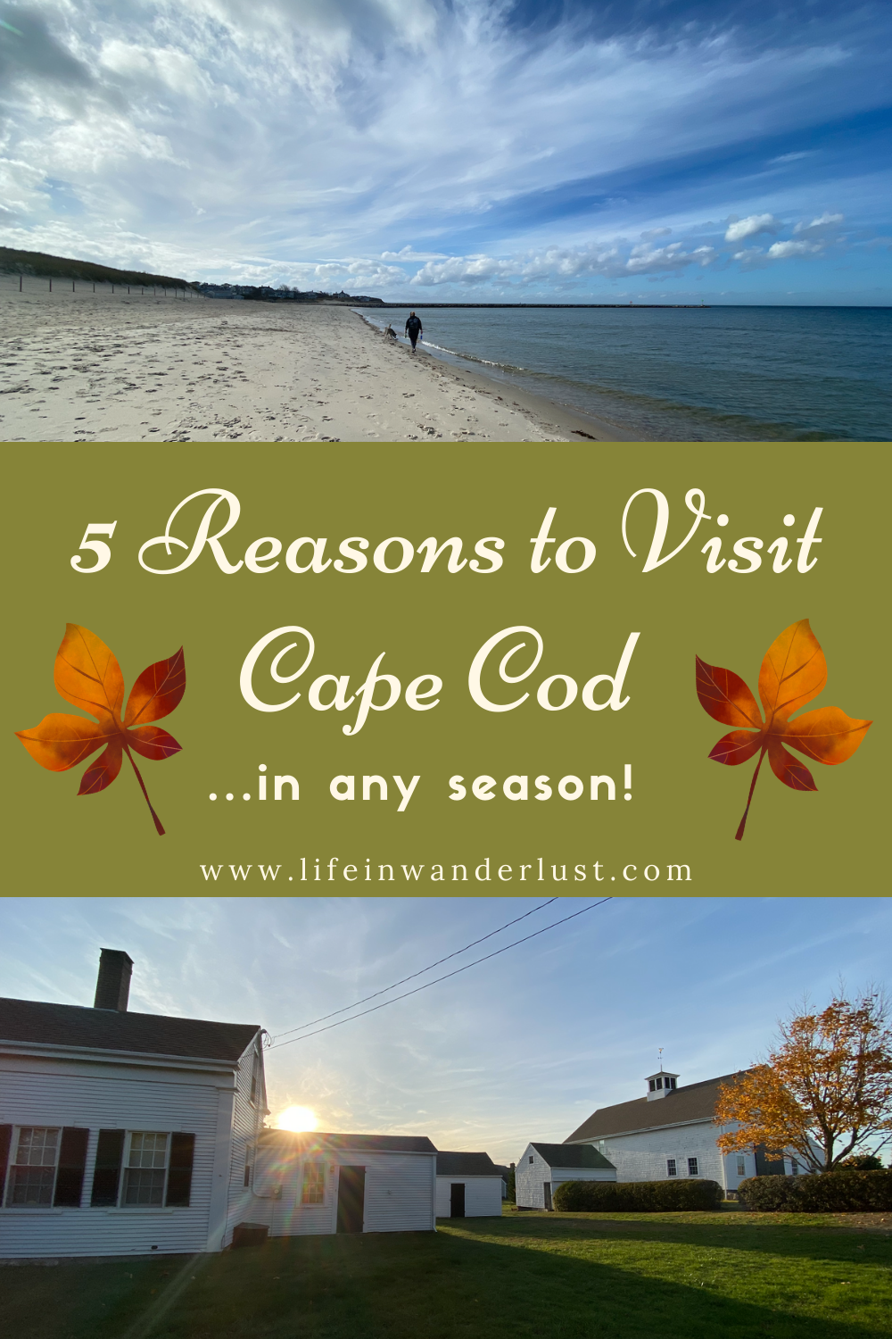 5 Reasons To Visit Cape Cod In Any Season Life In Wanderlust Travel Usa North America Travel Destinations Usa Travel Guide