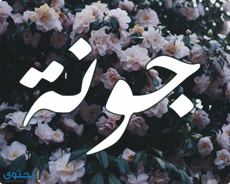 معنى اسم جونة وحكم التسمية Jwna معاني الاسماء Jwna اسم جونة Nike Logo Art