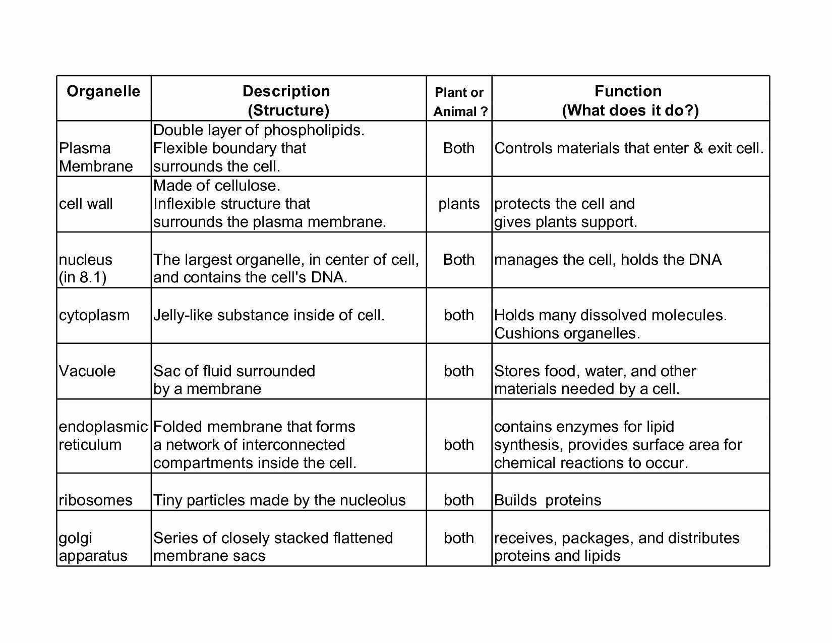 Animal Cell Organelles Worksheet 30 Cell Organelles Worksheet Middle School Worksheet In 2020 Biology Worksheet Cell Organelles Framed Words