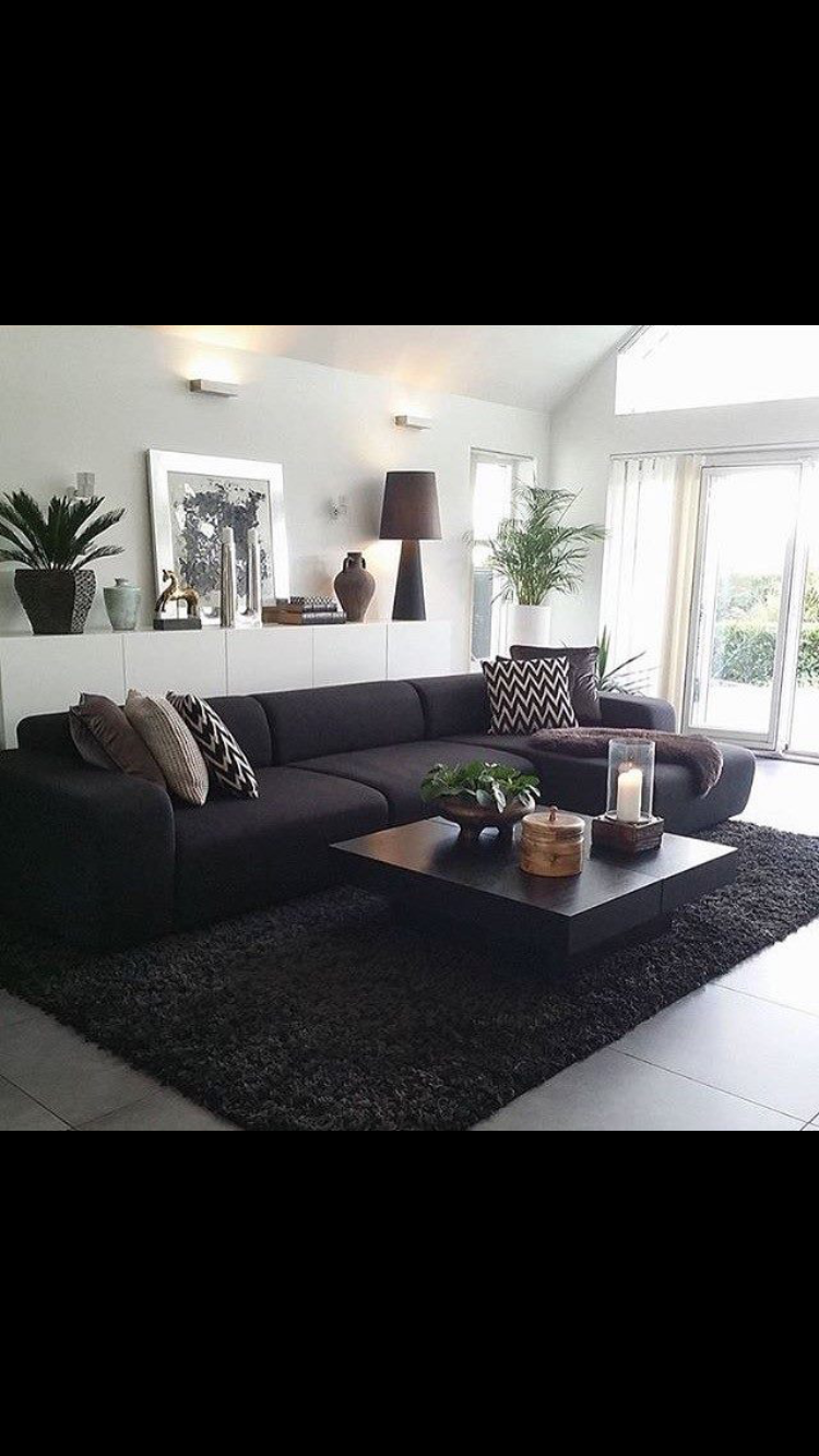 living room color schemes with black furniture%0A It u    s All in the Details  An Overview of Home Styling Tips   Fiddle leaf  fig  Fiddle leaf and Floor lamp
