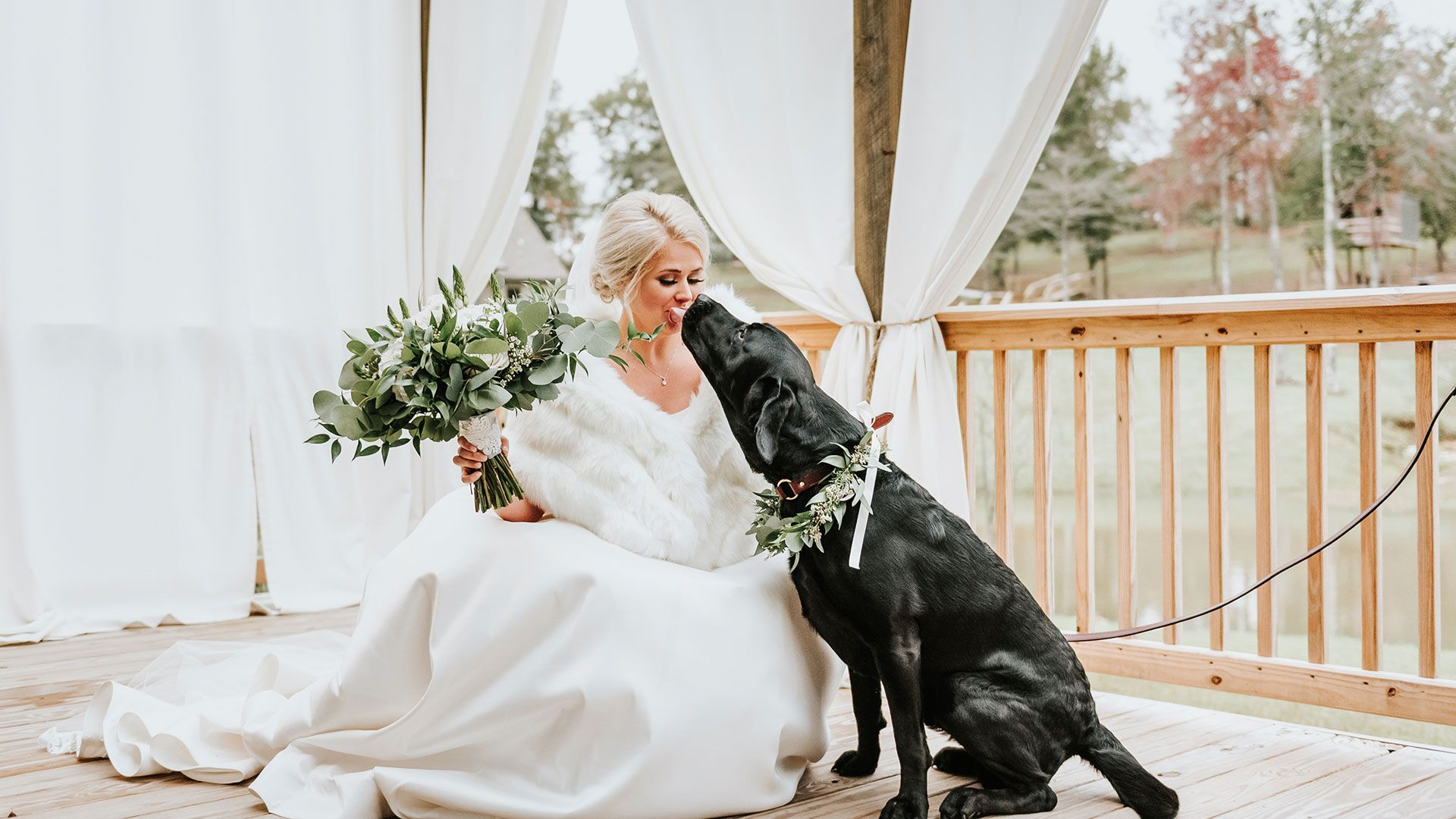 Alabama Bride S First Look Photos With Her Beloved Labrador Are Just The Sweetest Thing Wedding First Look Photos With Dog Dog Wedding