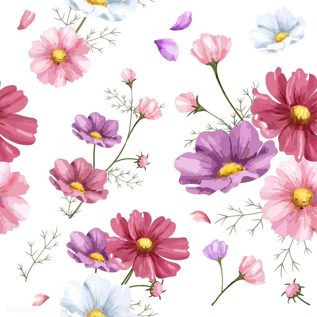 Download Premium Vector Of Hand Drawn Cosmos Flower Pattern 421496 How To Draw Hands Flower Illustration Watercolor Flowers