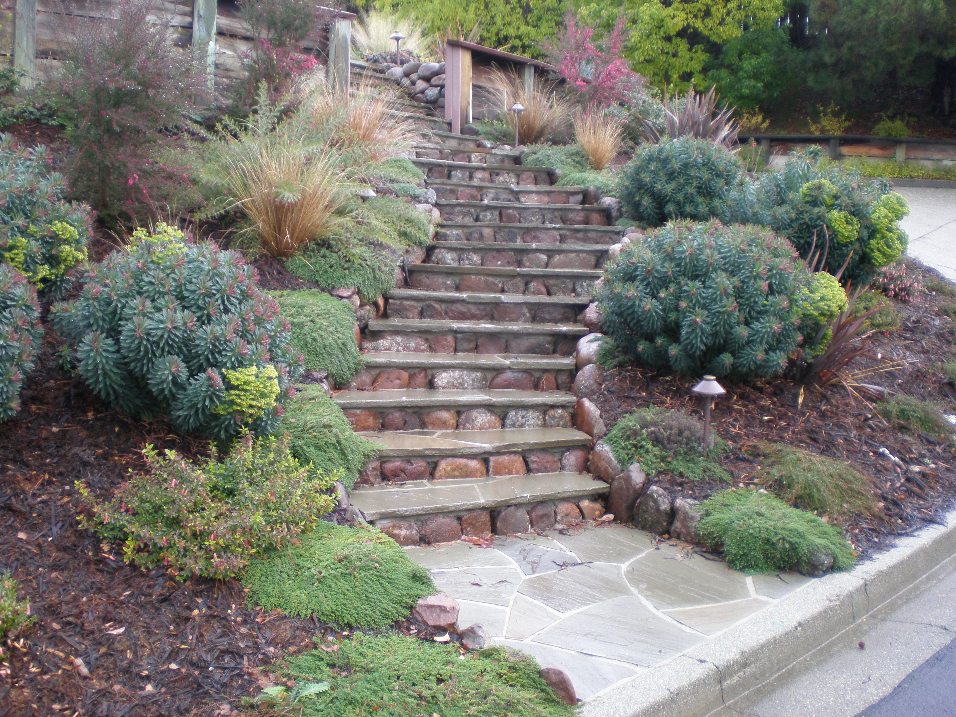 pretty small hillside landscaping ideas and hillside landscaping