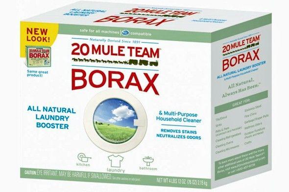 25 home remedies using borax!