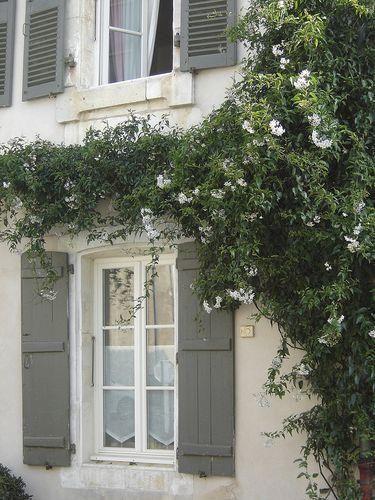Escale en Ré - LA MAISON DOUCE White jasmine, Grey houses and Jasmine