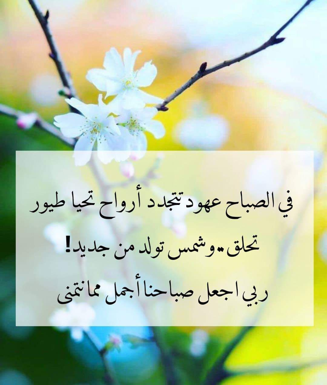 Pin By صورة و كلمة On صباح الخير Good Morning Good Morning Wishes Arabic Love Quotes Morning Quotes