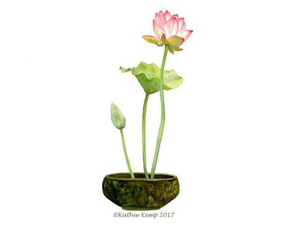 Lotus Watercolor Ikebana Japanese Zen Flower Arrangement Art ... on zen clock, zen baskets, zen dog, zen bedroom, zen design, zen table, zen plant, zen planter, zen painting, zen horse, zen stool, zen home accessories, zen tile, zen spring, zen furniture, zen teapot, zen radio, zen sculpture, zen bouquet, zen ring,