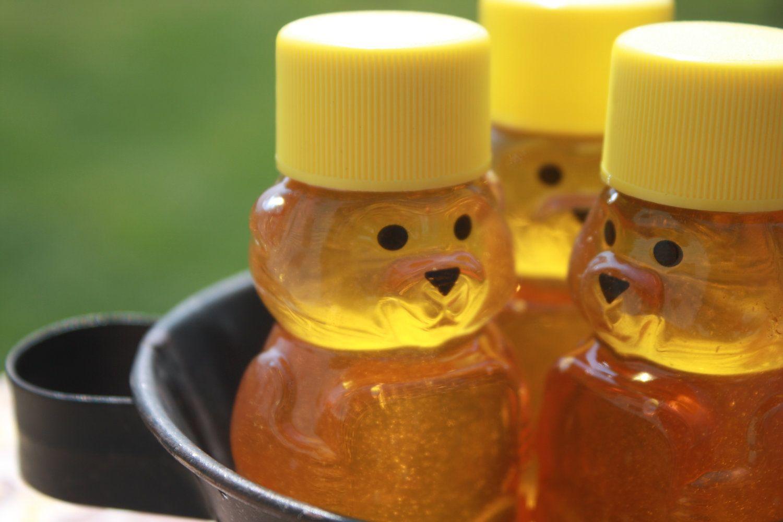 48 Raw Wildflower Honey Bear 2 oz. Wedding or by KlineHoneyBeeFarm, $100.00