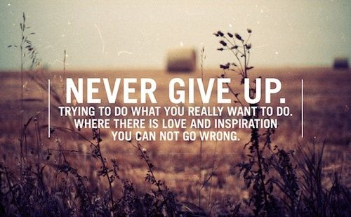 Never Give Up Inspiration Pinterest