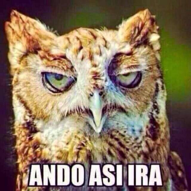 Asi Ira Memes Divertidos Chiste Grafico Humor En Espanol