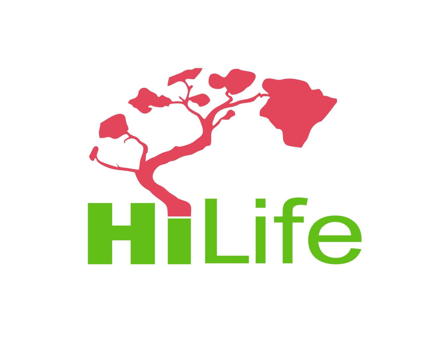 HiLife Vinyl Decal Custom Items And Adhesive - Custom vinyl decals hawaii