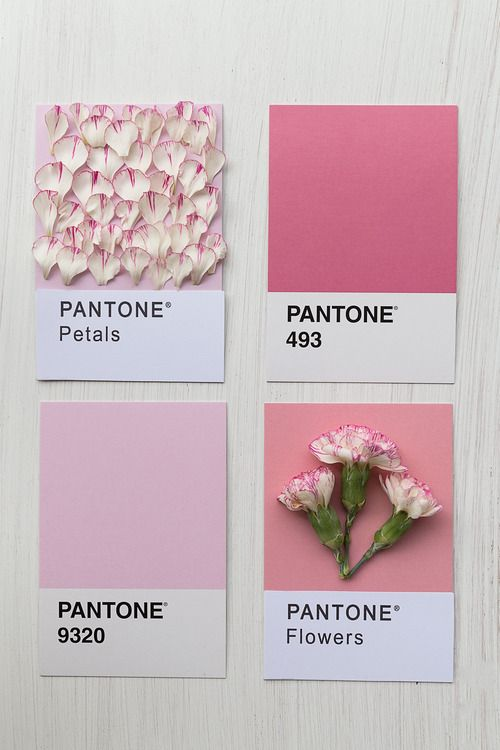 pictavo yearbooks colours pinterest yearbooks pantone and color. Black Bedroom Furniture Sets. Home Design Ideas