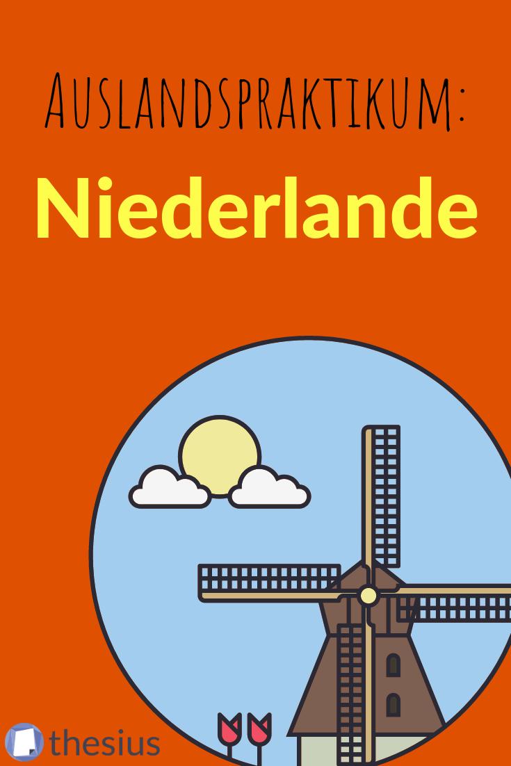 Praktikum In Den Niederlanden Lebenslauf Tipps Studieren Studienplan