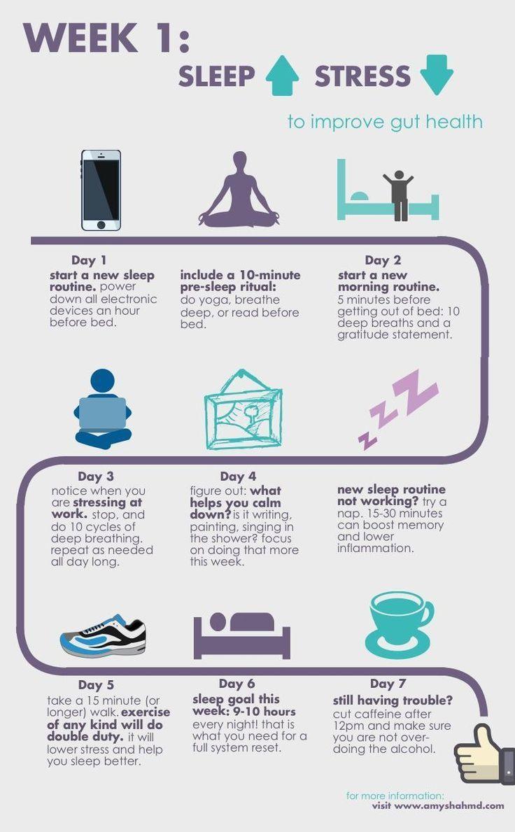 Die überraschende Art, deinen Darm zu heilen (Infografik) – Diät Blog – Jenny