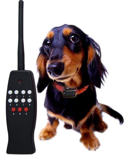 Remote Control Vibrating Dog Collar Dog Tools And Equipment