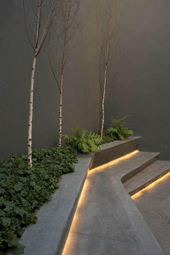 modernes design gartenlandschaft beton treppen birken efeu led