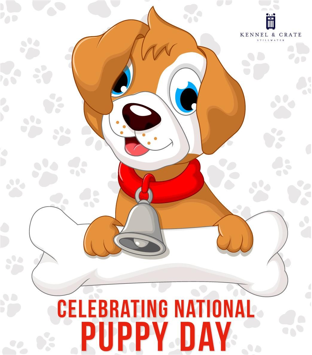 Happy National Puppy Day To All Pet Lovers Nationalpuppyday