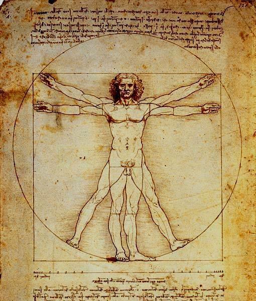 Hombre De Vitruvio De Da Vinci Simetria Axial Da Vinci Vitruvian Man Vitruvian Man Da Vinci Painting