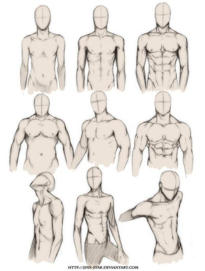 body types and poses (chest; m)