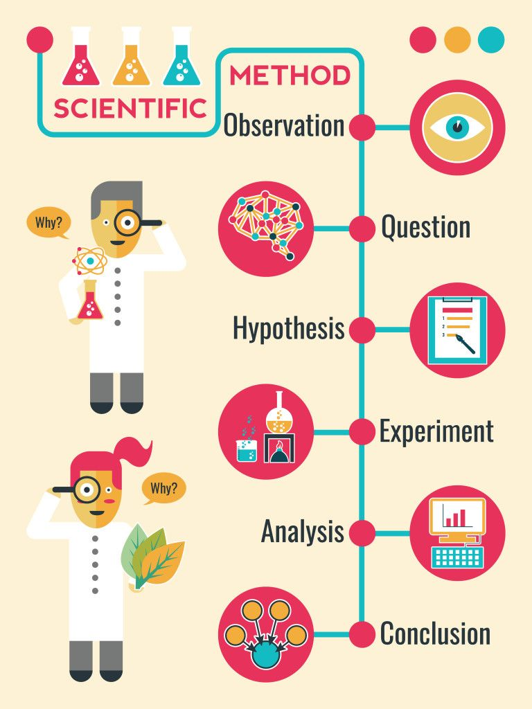 Infographic of scientific method Scientific method