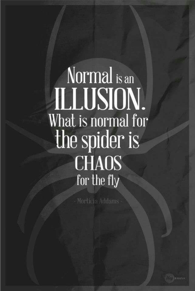 Normal is an illusion what is normal for the spider is chaos for normal is an illusion what is normal for the spider is chaos for the fly morticia addams famliaaddams addamsfamily movie filme quote altavistaventures Choice Image